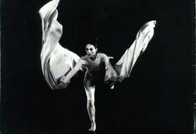 silk 1983