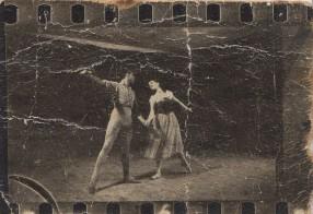 סילפידיה (1955 - מיא ארבטובה)